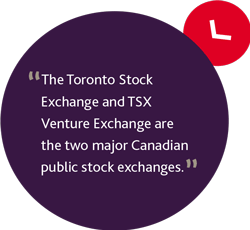 The Toronto Stock Exchange and TSX Venture Exchange are the two major Canadian public stock exchanges.